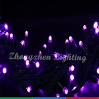high brightness led festoon string light