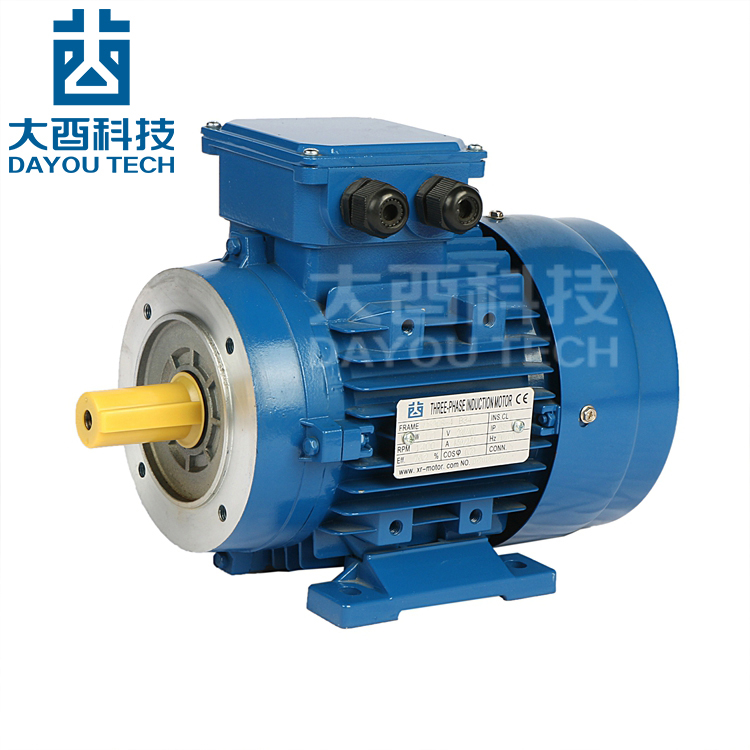 Ac three phase ms series double cage rotor induction motor