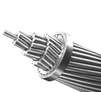 HIGH VOLTAGE CABLE AND WIRE FOR ELECTRICAL PROJECT DISTRIBUTION OVERHEAD BARE WIRE ACSR/AAAC/AAC/ABC