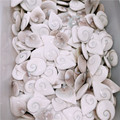 wholesale natural small fossil hearts for pendants, ammonite hearts for pendants