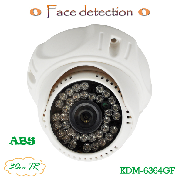 Analog Dome CCTV Camera Face Recognition