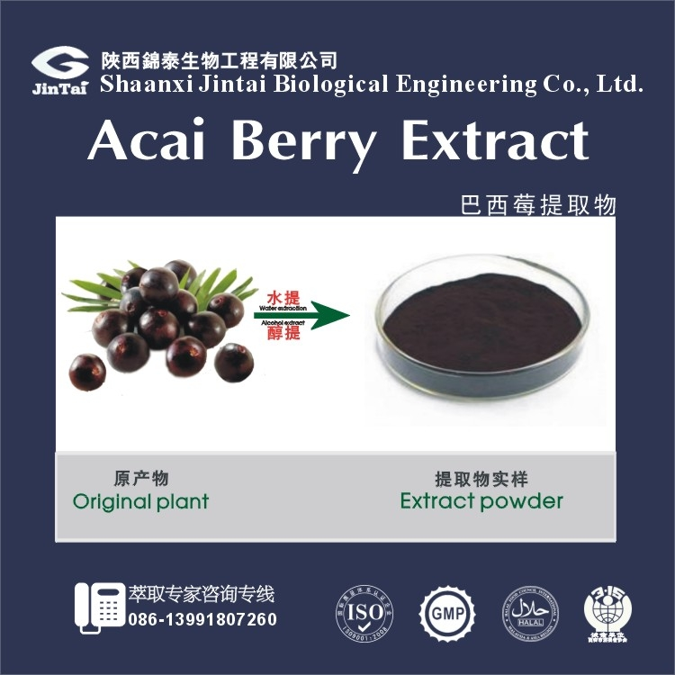 China supplier Strong antioxidant Acai Berry Extract