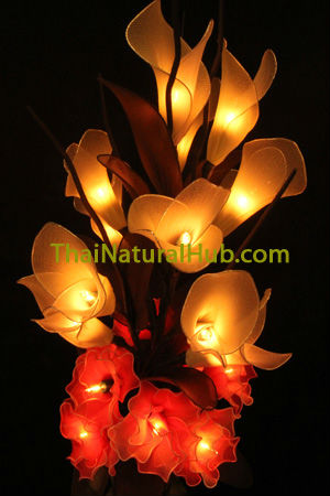 Light Flower - Calla Lily and Carnation