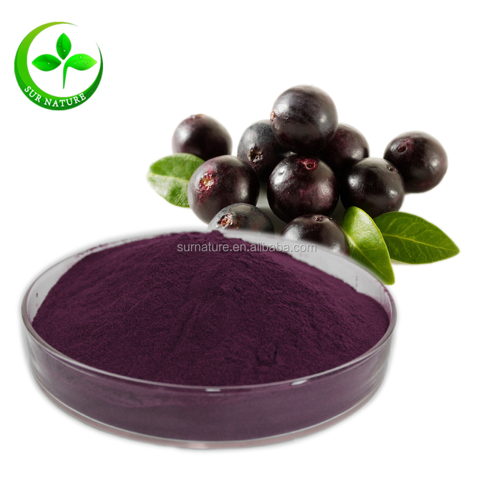 Factory Supply Acai Berry Extract Powder Wholesale / Acai Berry Juice