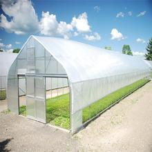 Poly Tunnel Horticultural Greenhouse