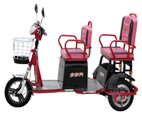 Hndicapped electric three wheel bike electric tricycle for passengers model LX-08