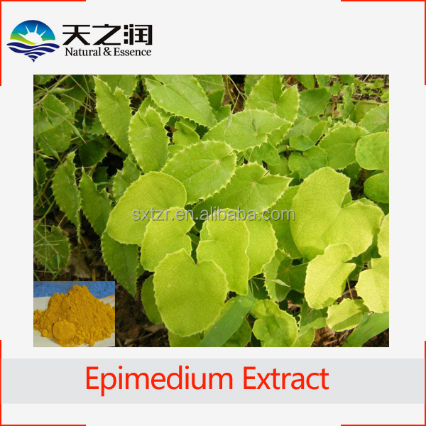 High Quality Epimedium Extract Icariin 10%-90% Powder epimedium sagittatum extract