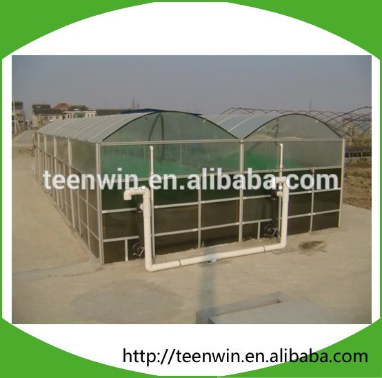 China Teenwin HOT sale home use portable assembly membrane biogas anaerobic digester for families to treat kitchen/organic waste