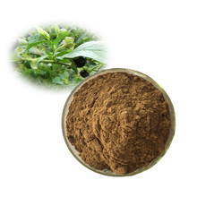 Atropa Belladonna Extract of 0.7% -1.5% Hyoscyamine