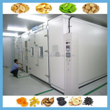 2015 high quality stainless steel Chinese Sale Tunnel Microwave Dried Fruit Processing Machine