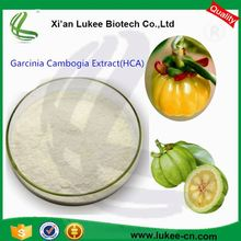 Chinese Pure Organic Free Sample Garcinia Cambogia Extract Powder HCA50% , garcinia cambogia side effect for weight loss