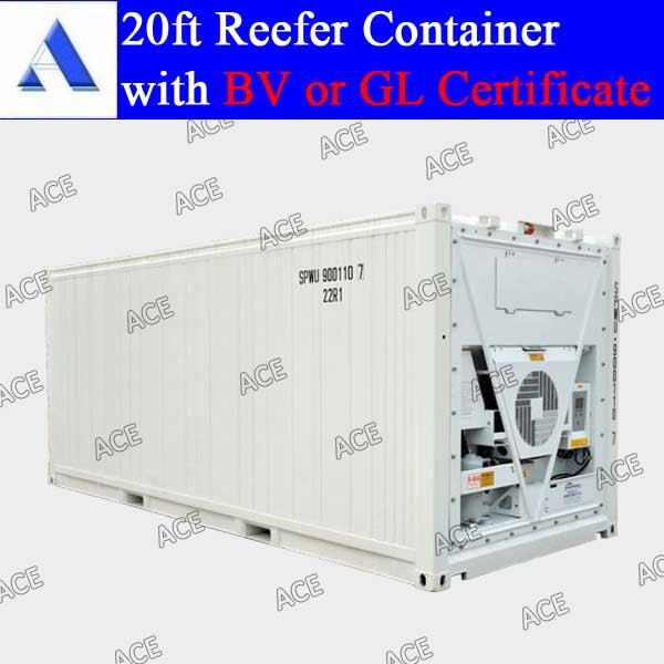 10ft 20ft 40ft van refrigerated container