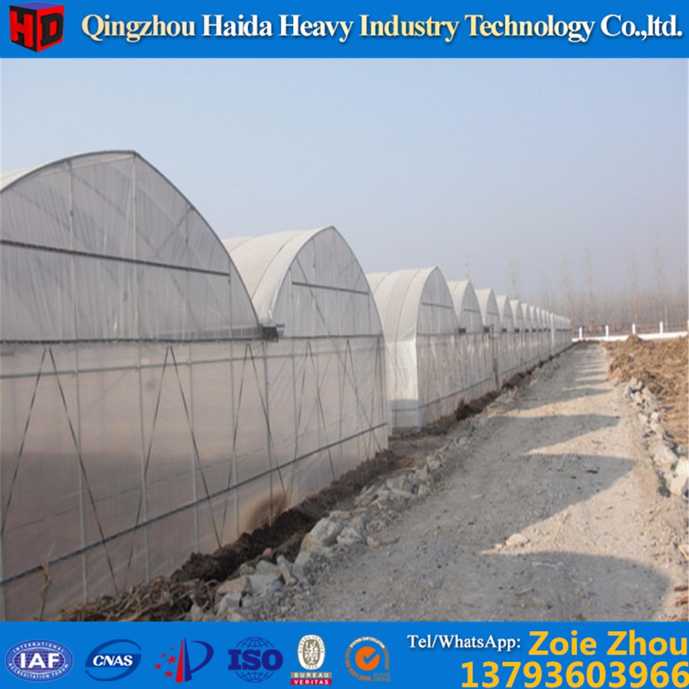 tunnel plastic arch greenhouse , vegetable production greenhouses china , commercial greenhouse china