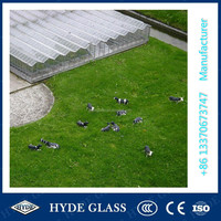 China 4mm toughened low iron sunroom glass