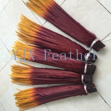 50-55cm Cheap Dyed Two-Tone ringneck pheasant feathers for dance costume