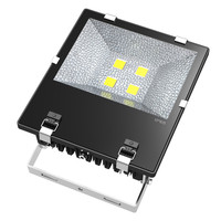 Factory price IP66 waterproof tennis court outdoor 200w led flood light
