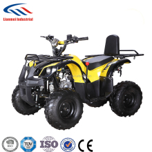 110Cc Quad Children Atv 110 chain Drive Vehicle LMATV-110G