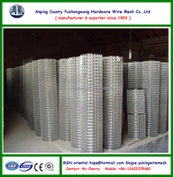 SUS 304,316 Stainless Steel Welded Wire Mesh(20 years' factory)