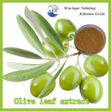 100% organic Olive Leaf Powder Extract
