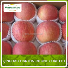 chinese export fresh red delicious apple fruit fresh apple