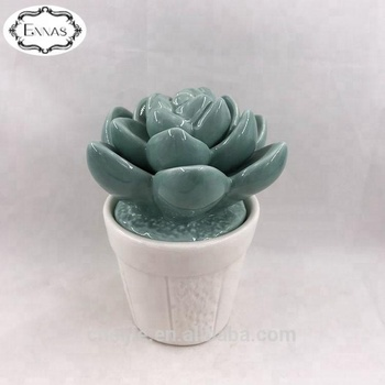 Mini Artificial Ceramic Succulent Plants with Long Live