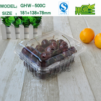Custom size small plastic cherry fruit storage packaging box with hinged lids