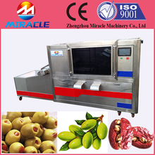 Fruit processing removing seed equipment/fruit seeds removing machine/fruit deseeding machine