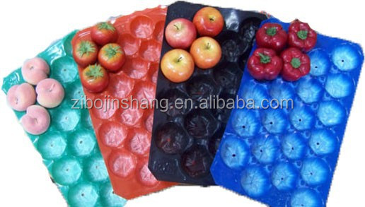 PET disposable plastic fruit Tray/container