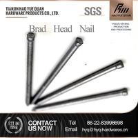 Professional bright brad nail galvanised bullet head /headless nail with CE certificate