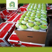 New design high quality green gala apples with high quality