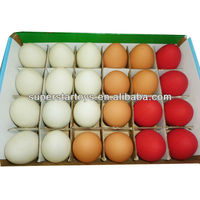 bouncy balls egg design 5131011-40