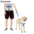Best seller wholesale training sports dog Step-In harness waist clasp leash harness