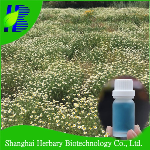 Professional essencial oil supplier shanghai herbary sale chamomile oil