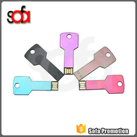 Low Cost Mini USB Flash Drives,Key USB, Metal USB Key