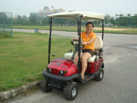 Unique design classic electric garden carts 4 wheel drive golf with cargo box or rear seat