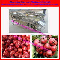 Lychee / chestnut / buleberry /strawberry / xinjiang jujube grading sorting machine