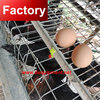 African top selling commercial farm poultry cages for chickens for philippines with great price