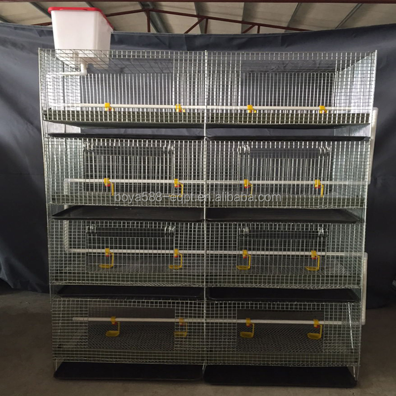 6 tiers quail cage philippines for quail laying with water cup