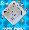 (L520) China Manufacturer Portable Spa Bathtub with CMP Jets