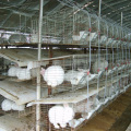 Trade Assurance Rabbit Cage House Design