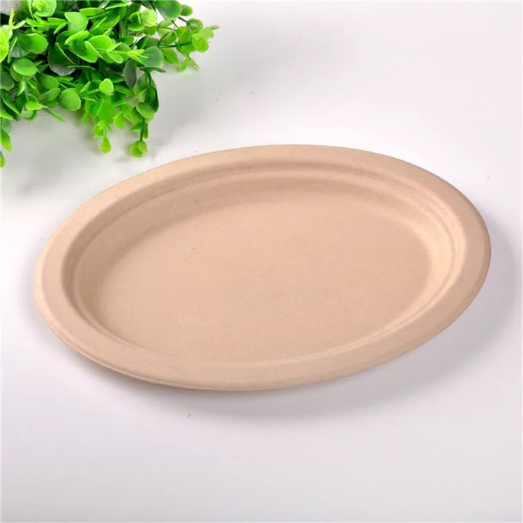 Wholesale BPA Compostable Paper Pulp Plates Disposable Food Serving Restaurant Plates For Party Serving Restaurant
