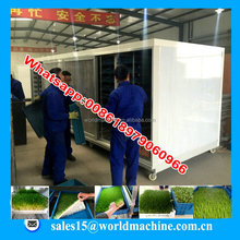 hydroponic barley grass grow rooms/ hydroponic grower/alfalfa grass nurturing machine feeding cattle horse etc feed