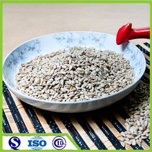 Chinese new crop bakery sunflower seed kernels