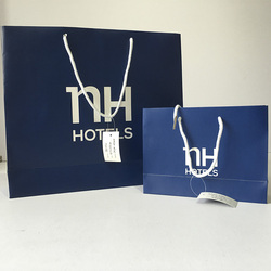 High Quality Custom Printing Brand Reusable paper bag for shoes