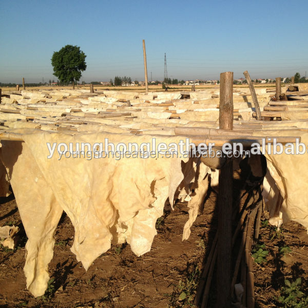 Dried Cow limed splits for Halal Food