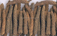 Natural long pepper Extract, long pepper Extract powder , Piper longum L. 4:1,10:1,20:1