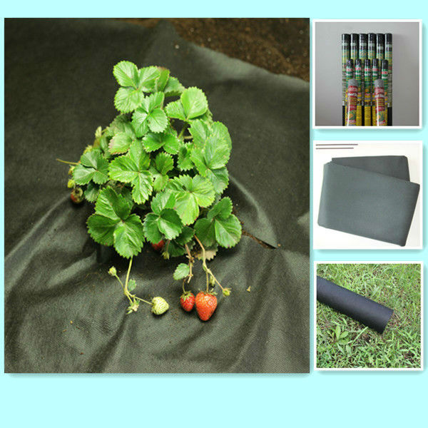 black weed control PP non-woven ground cover