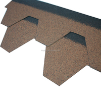 Factury supply Kingbeck Water proof asphalt roofing shingle