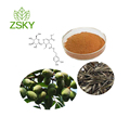 GMP Factory Supply 100% Natural Olive Leaf Extract in bulk