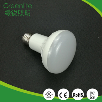 Customized professional camping bulb price